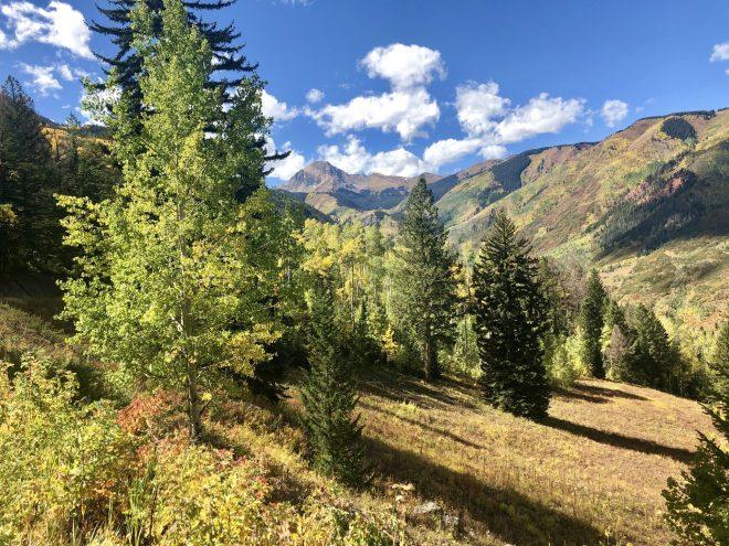 Colorado Fall Colors Snowmass