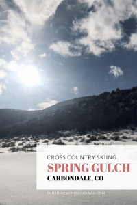 spring gulch carbondale
