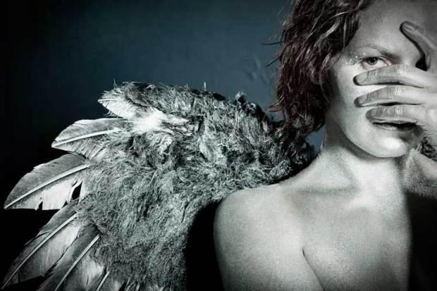 Cattani-angel-large