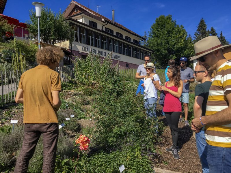 tour group learning about the herbs and plants in the krauter hotel edelweiss alpine herb garden