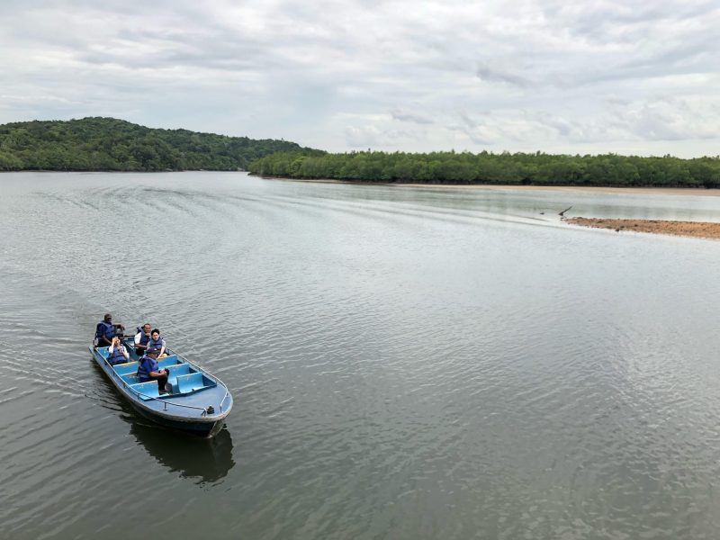 bintan island mangrove boat tour