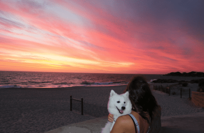 Tegan looking towards the sunset over the ocean while Zeus the japanese spitz pup looks at the camera