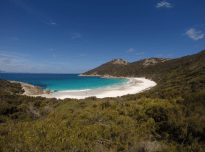 Green bushland, the whitest sand, the bluest, clearest, turquoise water in a little Bay in Albany