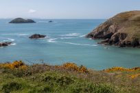Looking out from the inlet atop the headland. Blue water, green shubbery and blue skies