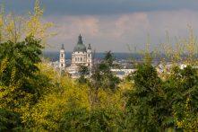Buda castle through yellow/lime green foliage