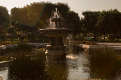 Water fountain turned golden in the evening light