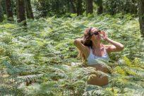 Summer time in Frances lush forrest