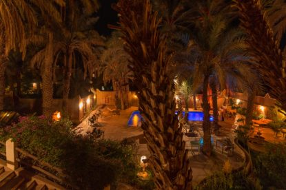 Night shot of the pool with date palms lining it