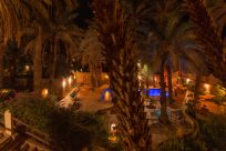 Night time around the pool, palm trees lit up