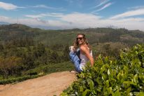Tegs drinking tea surrounded by Tea bushes