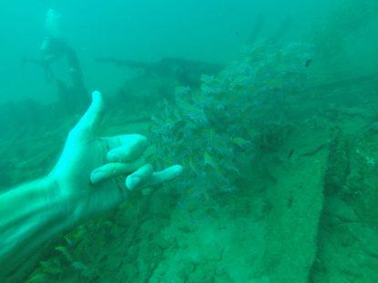 Underwater shakas