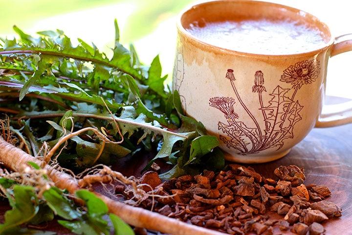 radacina de papadie tratament naturist