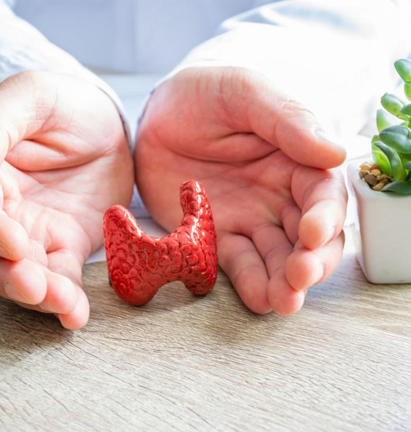 tiroida autoimuna medic tratament plante