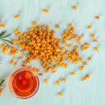Catina – cel mai bogat depozit de vitamina C si betacaroten! + RETETE