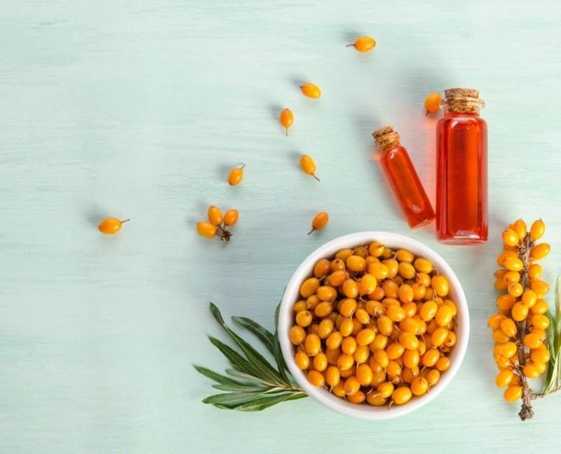fructe de catina, ulei de catina, tratamente naturiste catina, sunt sanatos