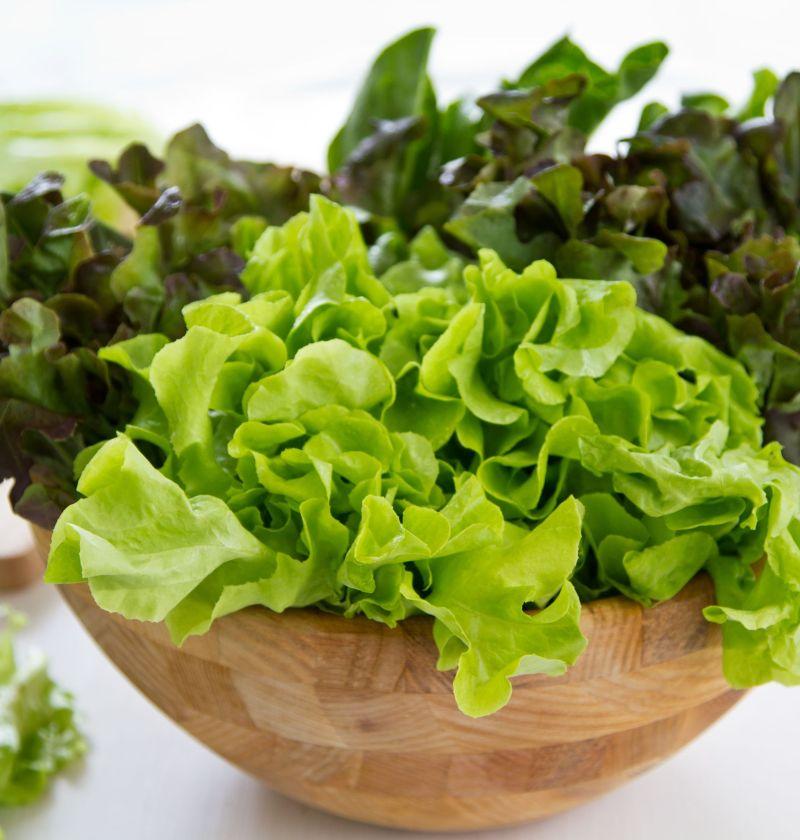 laptuca in castron, laptuci, salata verde