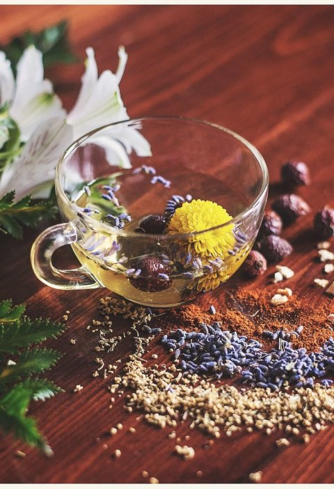 plante medicinale, leacuri babesti, ceai antistres, stres, stresul