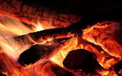 La eficiencia de la quema madera como combustible a debate