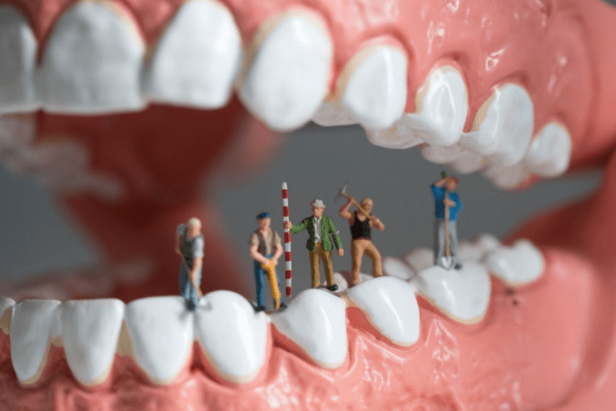 How the Best Dental Insurance Providers were Evaluated
