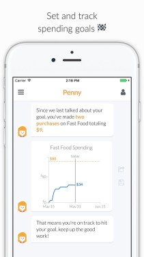 Features of the Penny App
