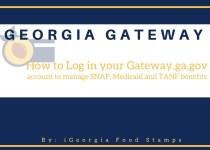 Gateway.ga.gov Login Help
