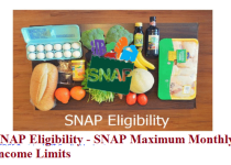 Food Stamps Income Limits