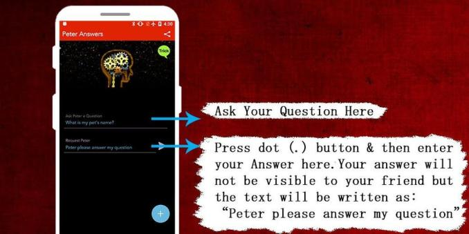 Peter Answers: What is it all About and How Does it Work