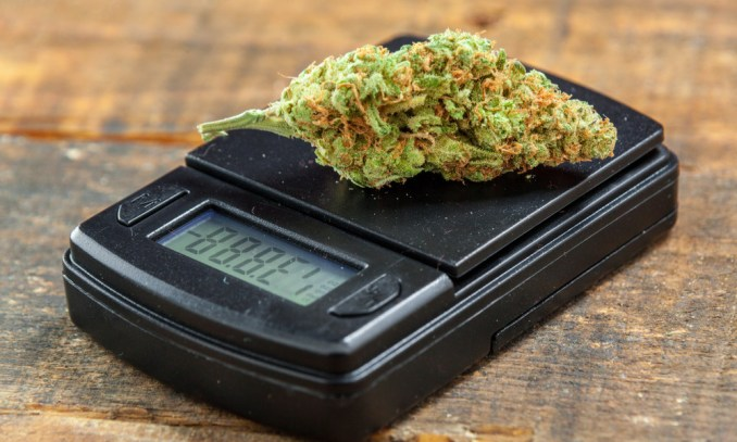How Much Does An Ounce Of Weed Cost?