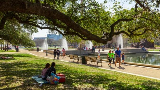 Top 10 Fun Activities in Houston for Adults
