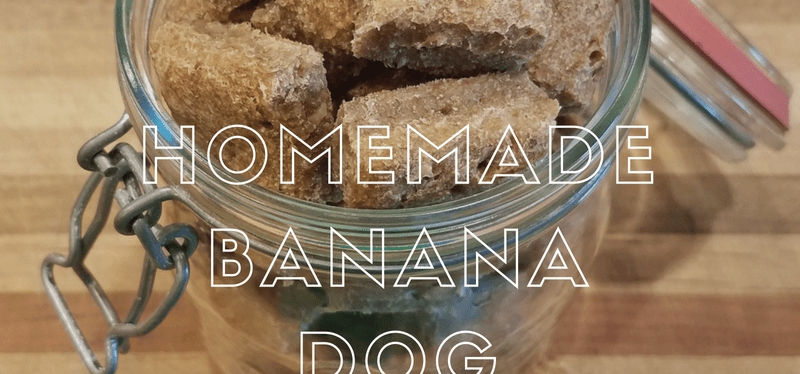 Homemade Banana Dog Biscuits