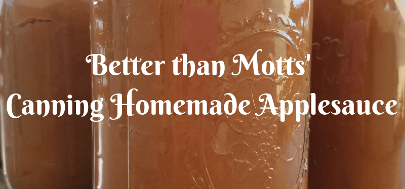 Better than Mott's canning homemade applesauce