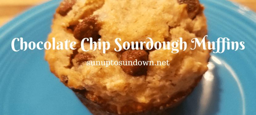 Chocolate Chip Sourdough Muffins