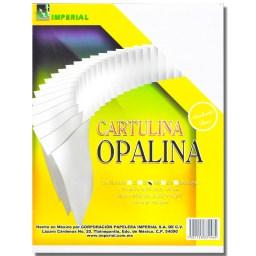 CARTULINA OPALINA 8.5X11 100 HOJAS