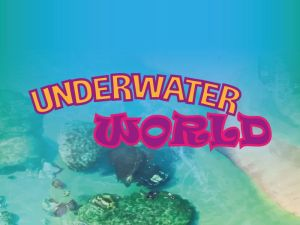 Underwater World Dinner Sunway Lagoon