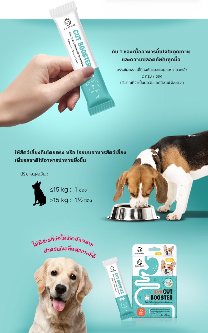 ป้องกันท้องเสียจากการเปลี่ยนอาหาร สำหรับสุนัข