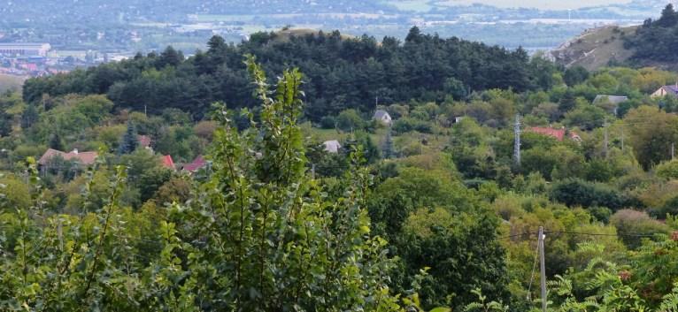 Író-hegy a Frank-hegyről