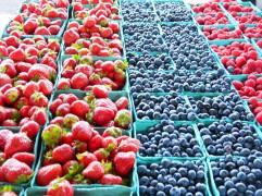 The Plattsburgh Farmer's Market runs from June to October and offers local, fresh produce, flowers, crafts, baked goods, and more.