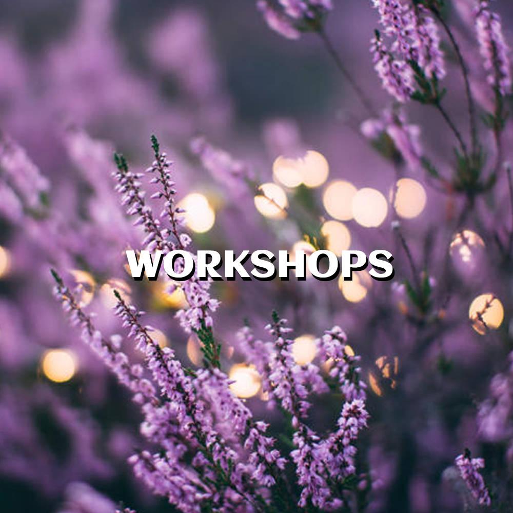 Workshops Service Image