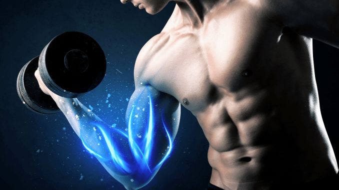 muscle building causes