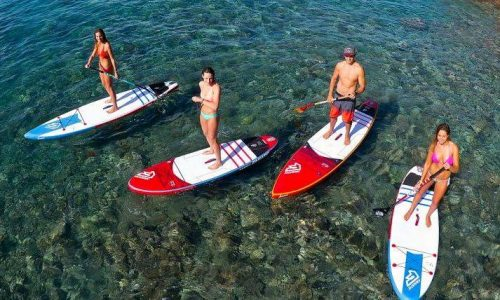 group of people paddle boarding