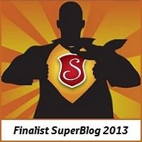 Banner Finalist SuperBlog2013