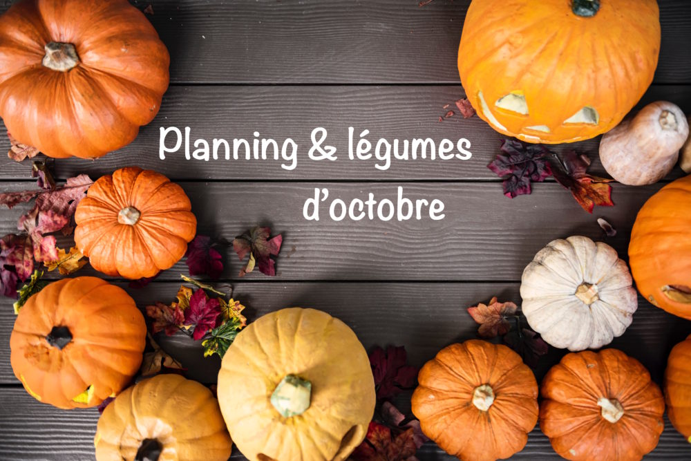Le planning d'octobre de Super Boîte à Lunch