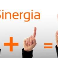 5 elementos imprescindibles para una sinergia de éxito