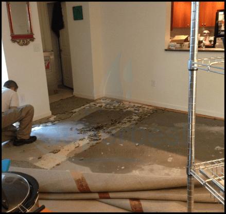 28 las vegas water damage restoration company repairs removal Property restoration Services 1