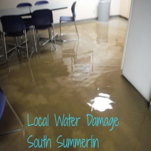 Local Water Damage South Summerlin