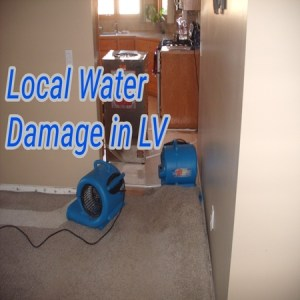 Local Water Damage in LV
