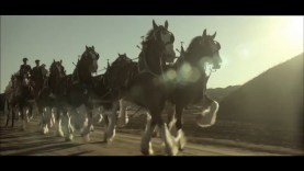 Budweiser – Return of the King (2012)