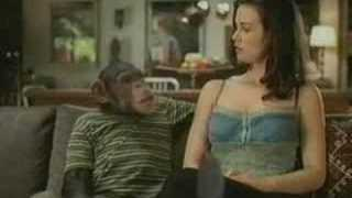 2006 Bud Light –  Chimp