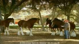 SuperBowl-Ads.com Top 5 Ads of 2008 (Super Bowl XLII)