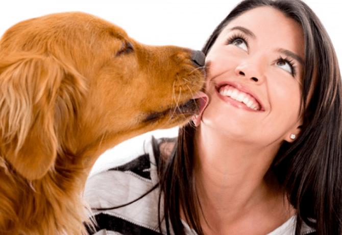 Los besos de mi perro ¿son malos?